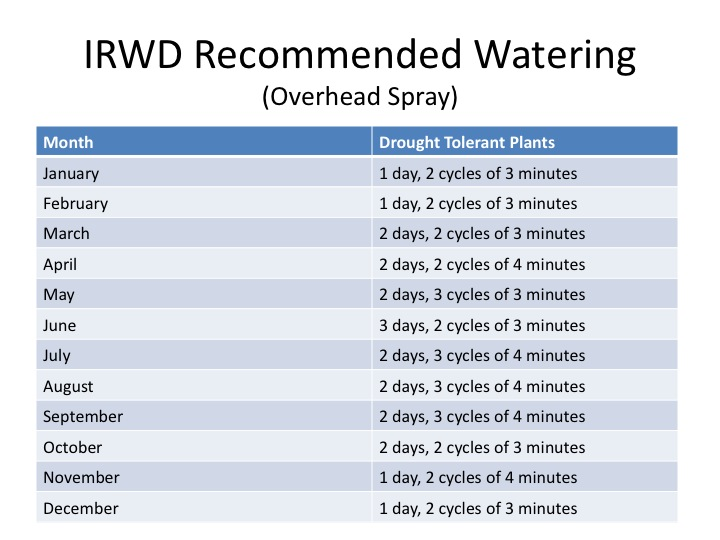 watering schedule