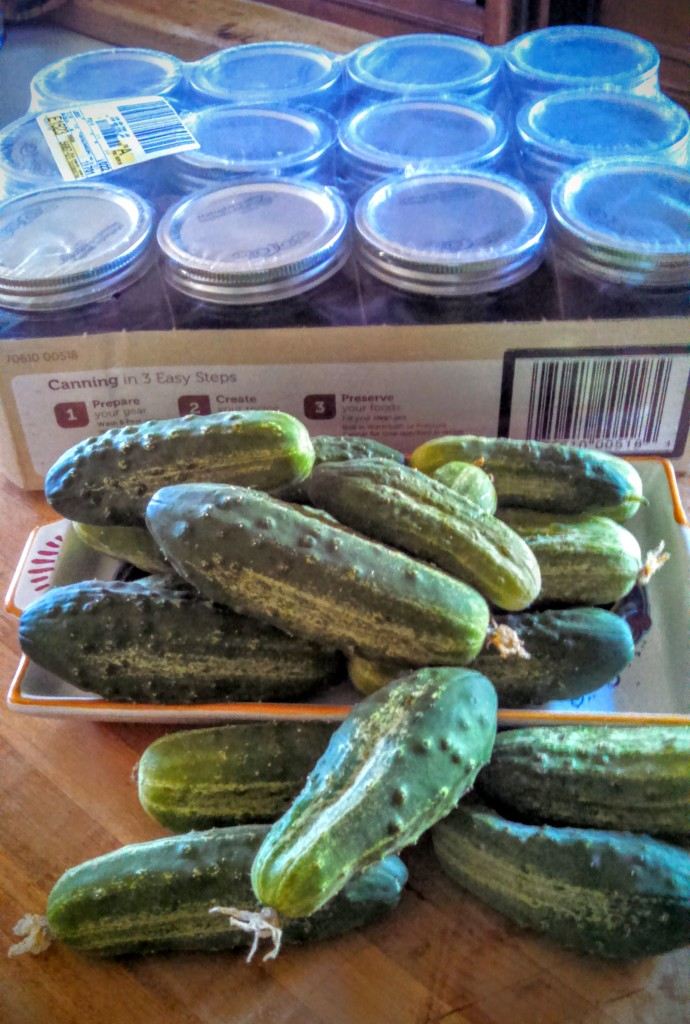 Pickling supplies