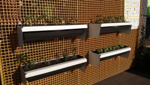 lattice wall with planter boxes