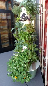 hydroponic grow tower