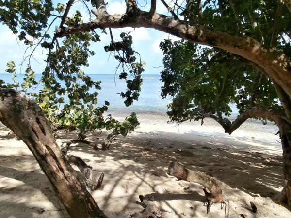 La spiaggia vicino a Bahia Blanca a Rio San Juan