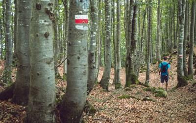 Camminata tra Marana e Montefalcone