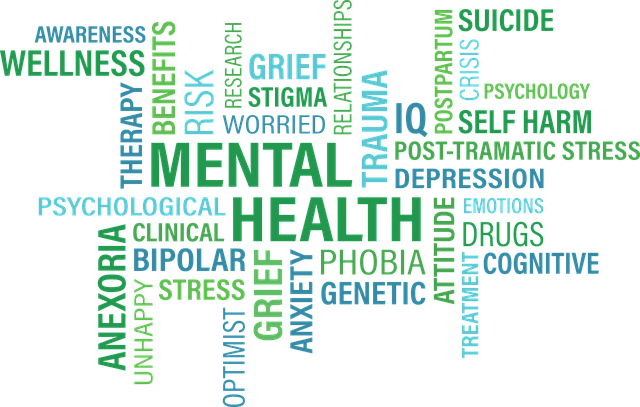 Different Mental Health Problems in College Students (1)