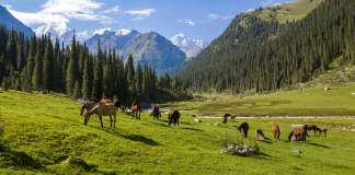 Vliegtickets Kirgizië