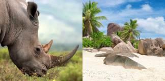 Zuid-Afrika-&-de-Seychellen