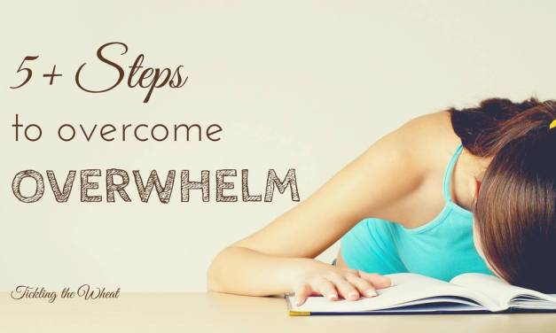 5+ Steps to Overcome Overwhelm