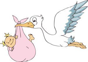 Fiocco-nascita-Coccarda-rosa-Bimba-Cicogna-con-nome-40x28cm-extra-big-6722