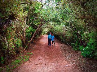 El camino de Costa Rica con Fiorella Delgado