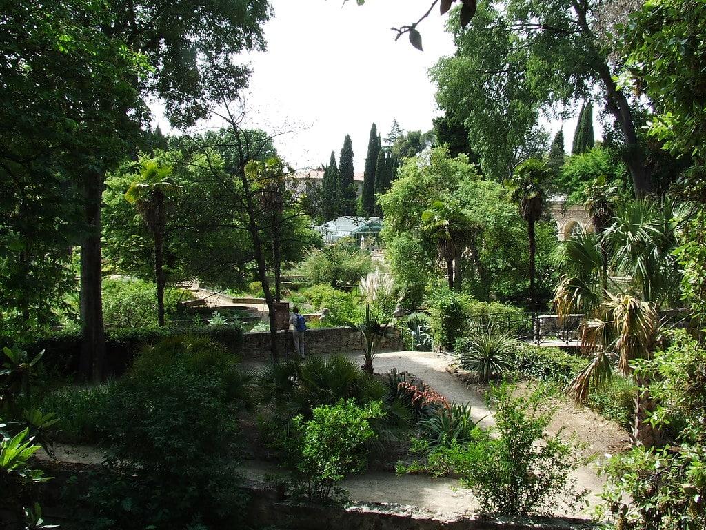 jardin des plantes - que faire à montpellier