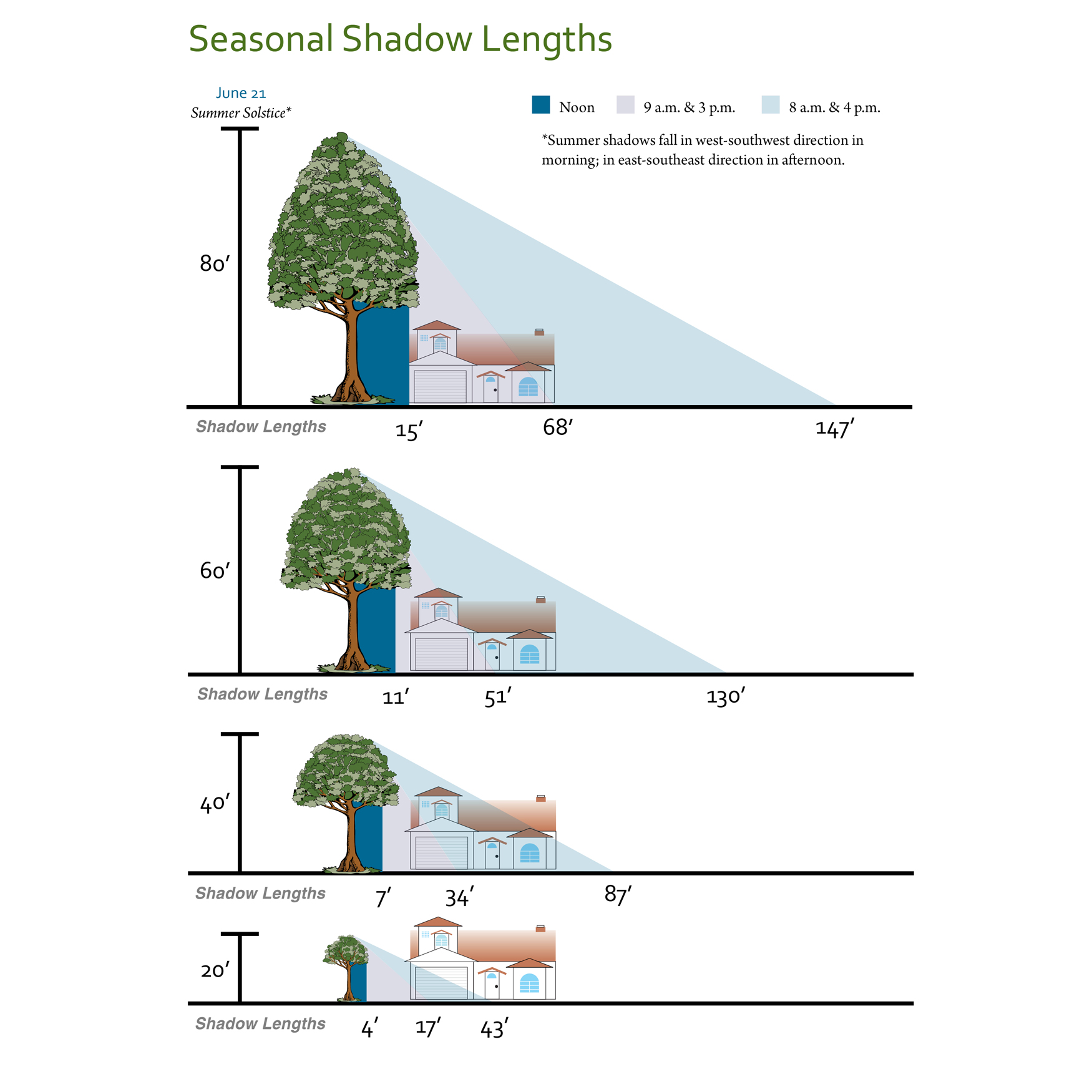 Shade Tree Shadow Lengths