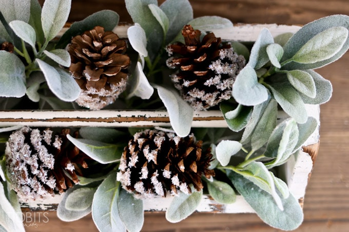 Diy Snow Covered Pinecones Tidbits