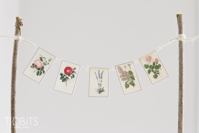 Mini Botanical Cake Banner FREE Printables. Hang this sweet cake banner over your treats or around your home.