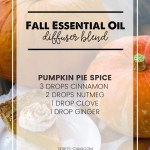 The Most Delightful 10 Fall Essential Oil Diffuser Blends Tidbits