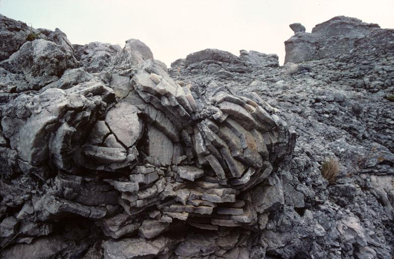 I landet annorlunda – öar, öbor och besökare i gotländska turistbroschyrer