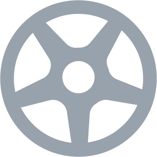 Image of the Standard Alloy Wheel Cover Icon