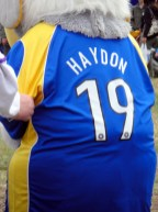 Back of Haydon the Womble's football shirt