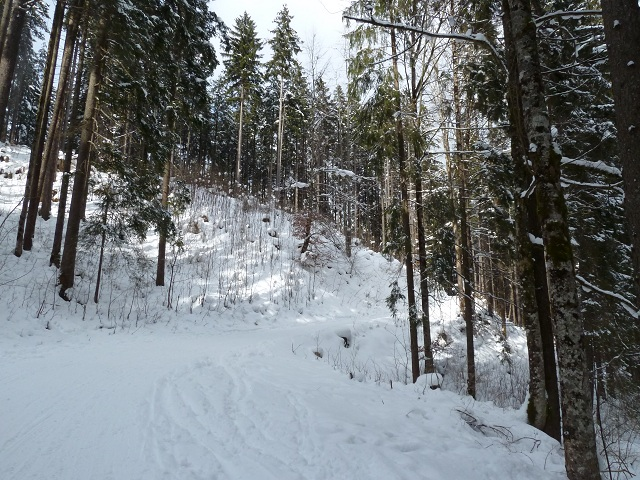 Weg zur Vilser Alm im Winter