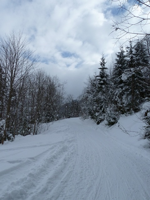 Aufstieg zur Vilser Alm im Winter bei Schnee