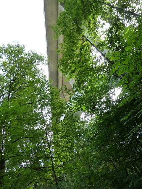 unter der Argentobelbrücke