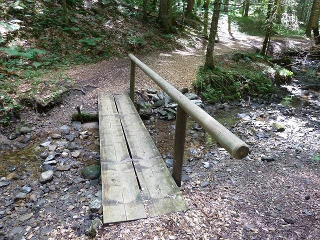 Wegabschnitt im Wald auf dem Carl-Hirnbein-Weg zwischen Weitnau und Missen