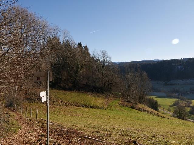 auf dem Carl-Hirnbein-Weg bei Wilhams