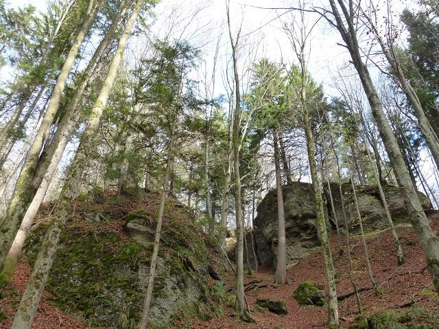 Nagelfluhbrocken in der Teufelsküche bei Obergünzburg