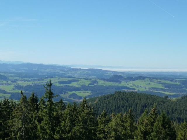 Schwarzer Grat - Bodenseeblick