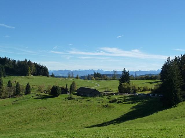 Weg zur Wenger-Egg-Alpe in der Adelegg