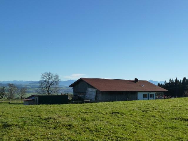 Hinauf zur Bergmang Alpe: gemütlicher Familienspaziergang bei Ruderatshofen
