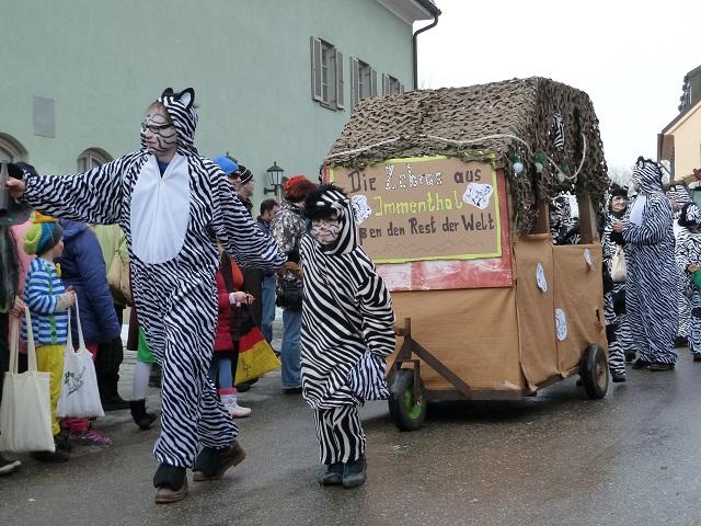 39-Immenthaler Zebras