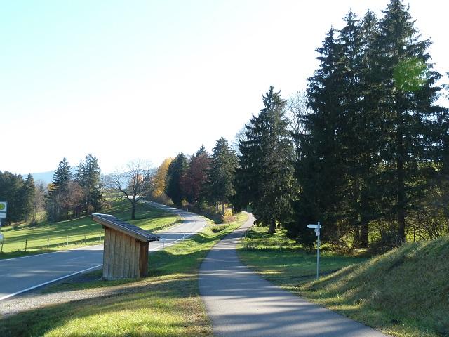 Radweg am Forggensee