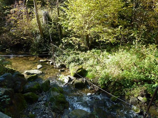 Der Wasseramselsteig im Galetschbach