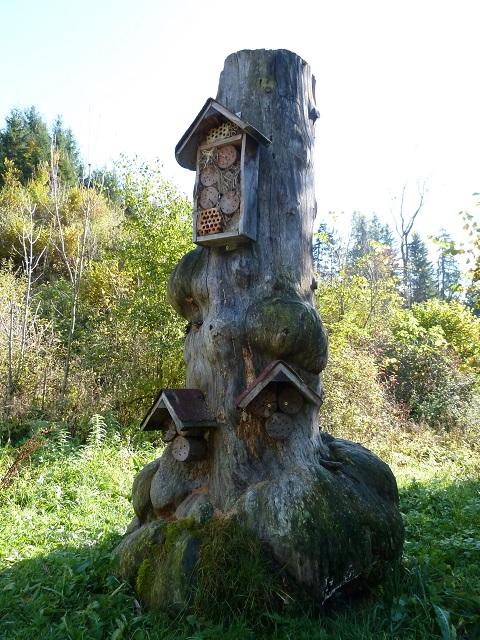 Insektenhotel an einem Totholzstamm
