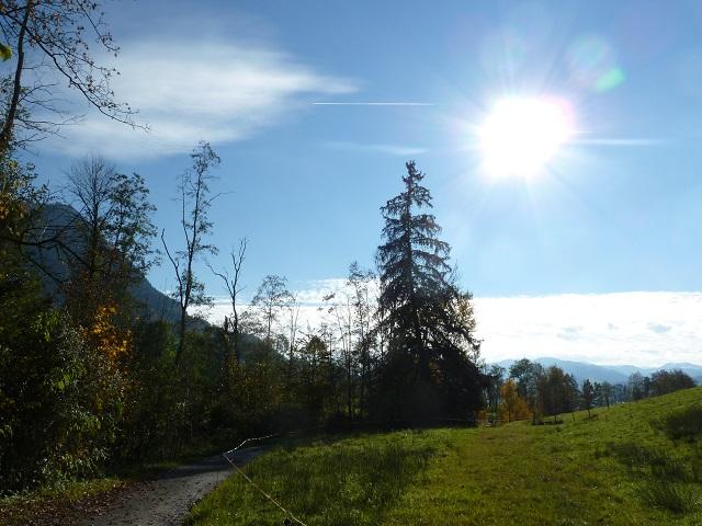 Weg am Galetschbach