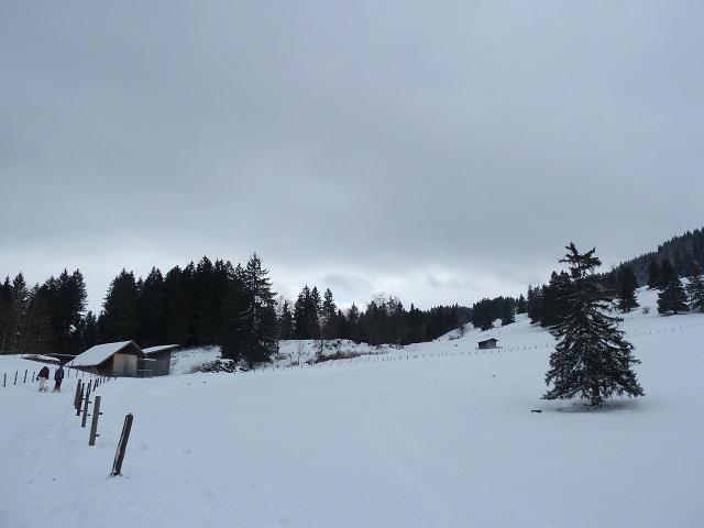 Aufstieg zum Rodeln am Buchenberg im Allgäu