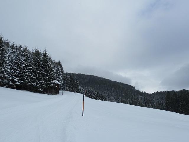 Wanderweg zur Alpe Stubdental im Winter