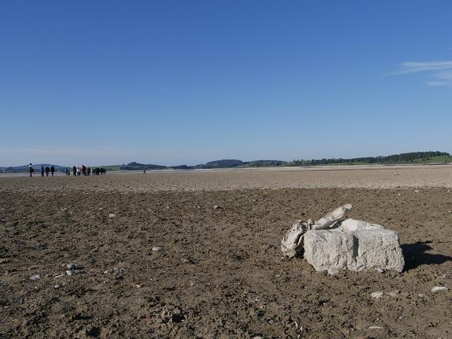 Heuschober-Schwelle auf dem Grund des Forggensees