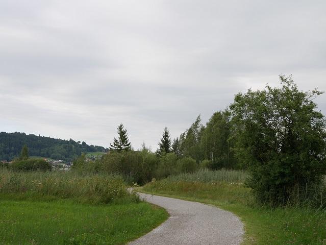 Rundwanderung Hopfensee - Blick auf Hopfen