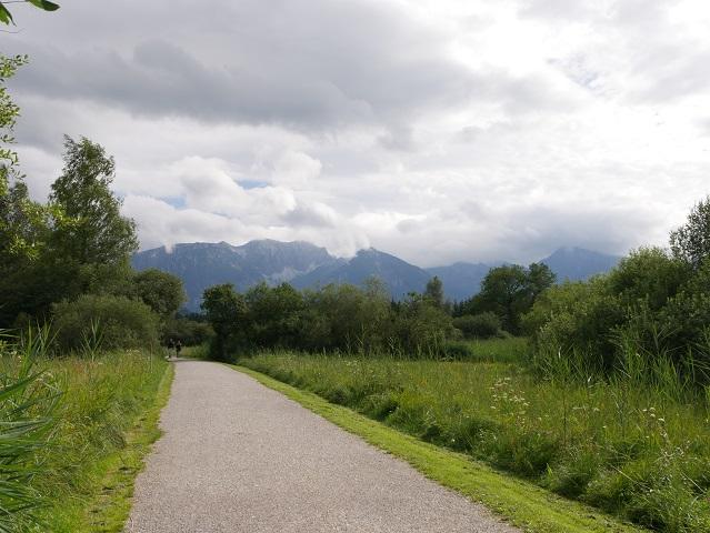 Rundwanderweg Hopfensee - durchs Moor in Richtung Berge