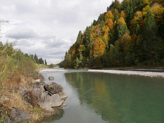 Die Iller zwischen Oberstdorf und Fischen mit herbstlichem Uferwald