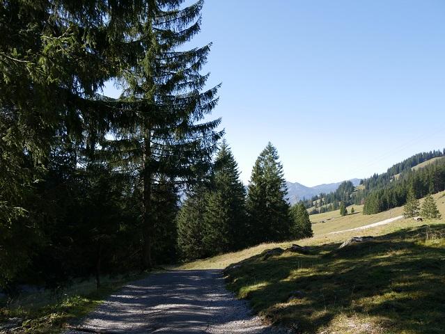 Rundwanderweg Seealpe - von der Hofhütte Seealpe in den Talgrund