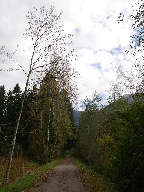 Radweg an der Breitach bei Oberstdorf