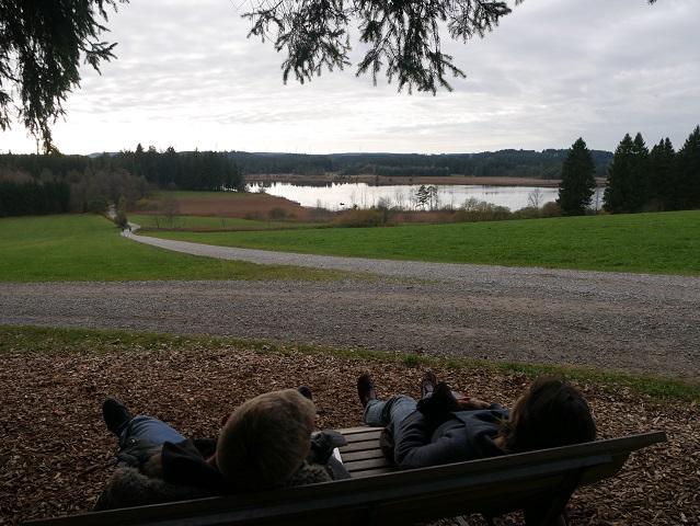 Ruhebank mit Panoramablick - Gelegenheit zur Pause bei einer Wanderung rund um den Elbsee