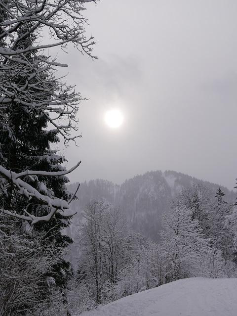 Wintersonne in Schneelandschaft bei Pfronten