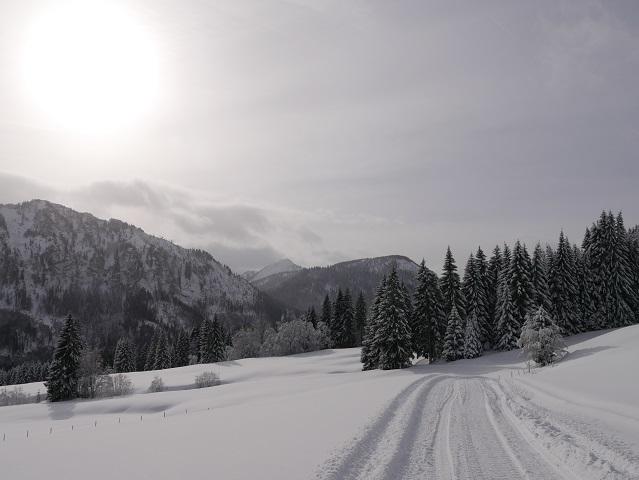 Winterweg zur Gundhütte mit Schnee und Bergen und Fichten