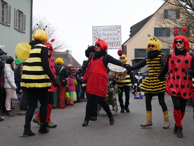 Flotte Bienen und Käfer auf dem Faschingsumzug Obergünzburg 2018