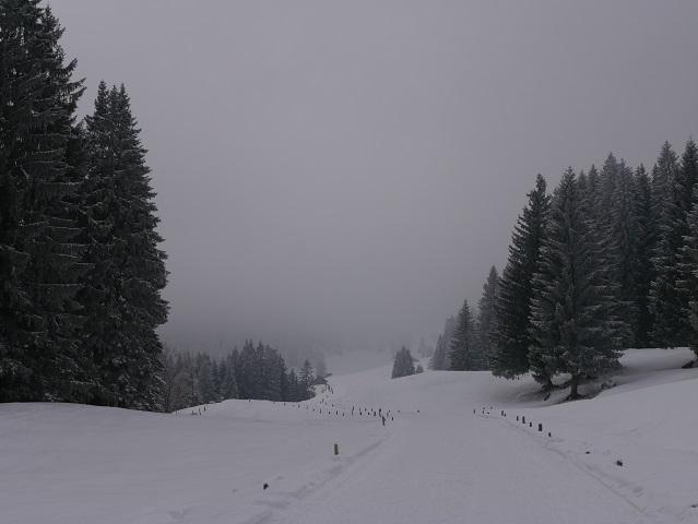 Winterwandern im Gunzesrieder Tal - auf dem Weg zur Rappengschwendalpe
