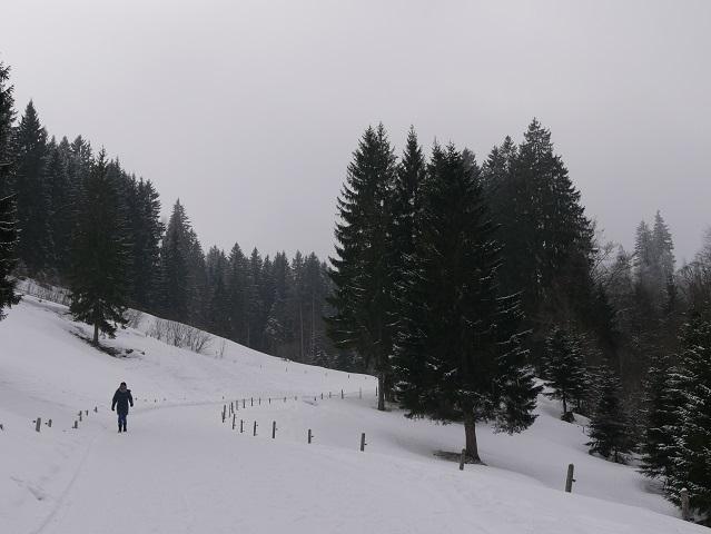 Winterwanderweg zur Alpe Rappengschwend
