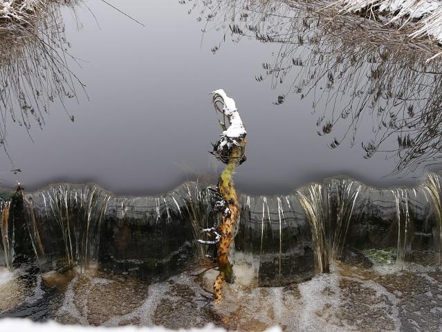 Moorbach-Wasserfall mit Ast