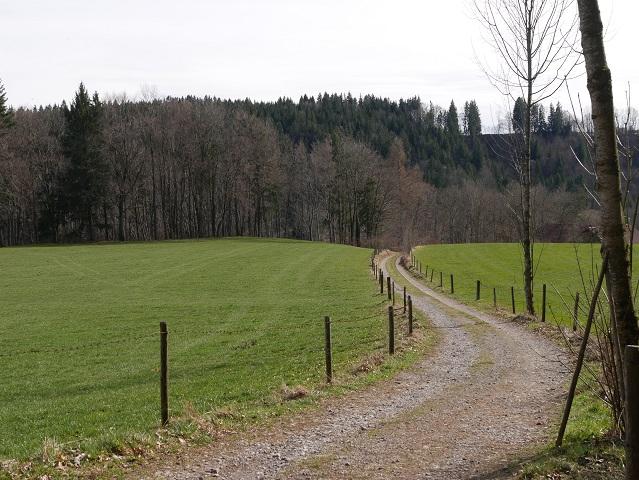 Wanderweg zum Illersteg bei Altusried